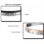 "Tatanium Rose Gold and Black ""Be True TO one's World"" Couple Bangles with Circular holes C868"